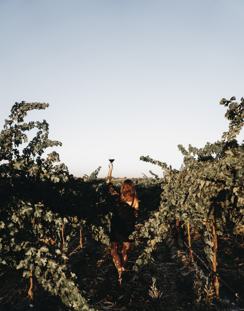 The Complete Guide to Paso Robles Wine Country